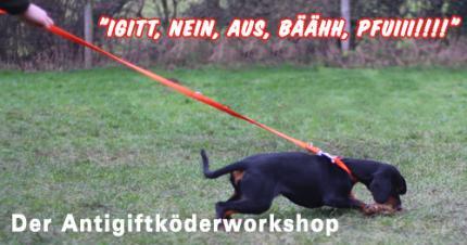 """""""Igitt, Nein, Aus, Bäähh, PFUIII!!!!"""" - Der Antigiftköderworkshop"""