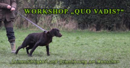 """Workshop """"Quo vadis?"""" Leinenführigkeit und Orientierung am Menschen"""